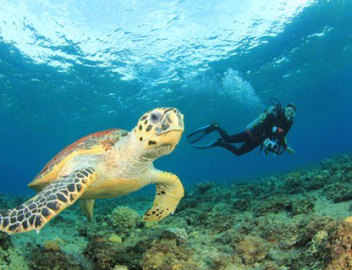 Podvodno snemanje